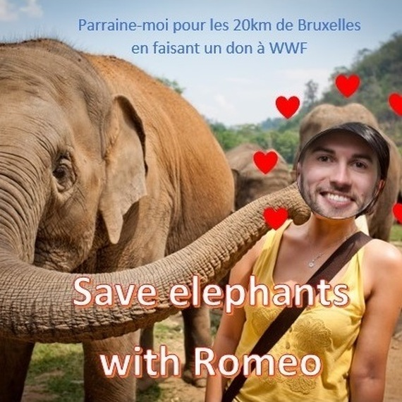 Save elephants with Romeo