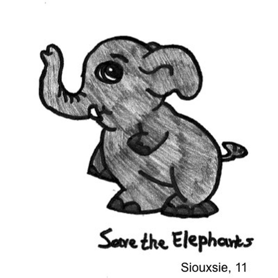 Run for the elephants