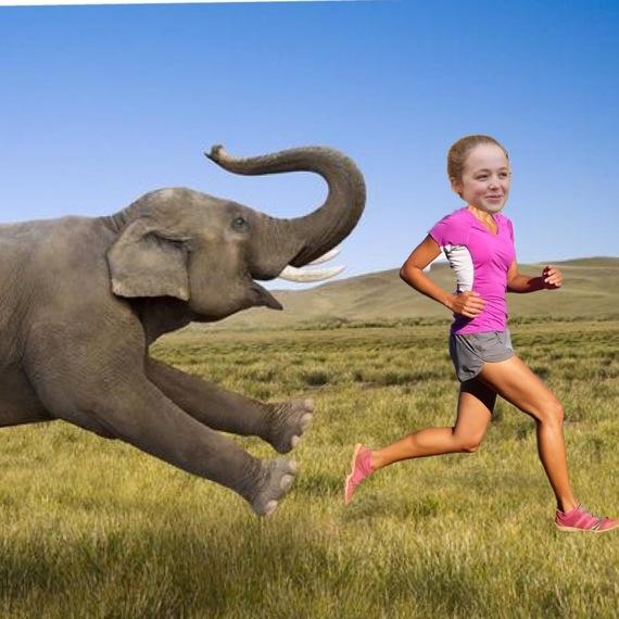 Joanna loopt voor de Afrikaanse olifant