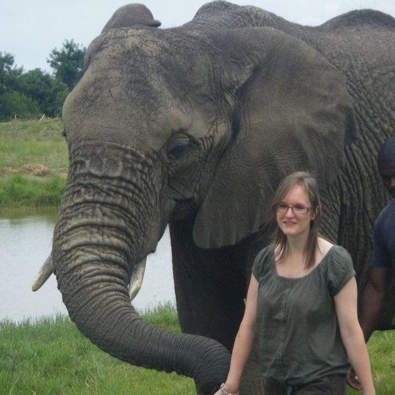 Je cours pour les éléphants