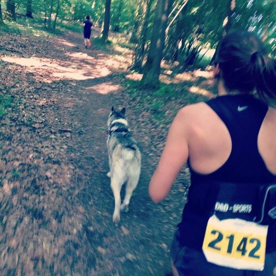Run pour les loups